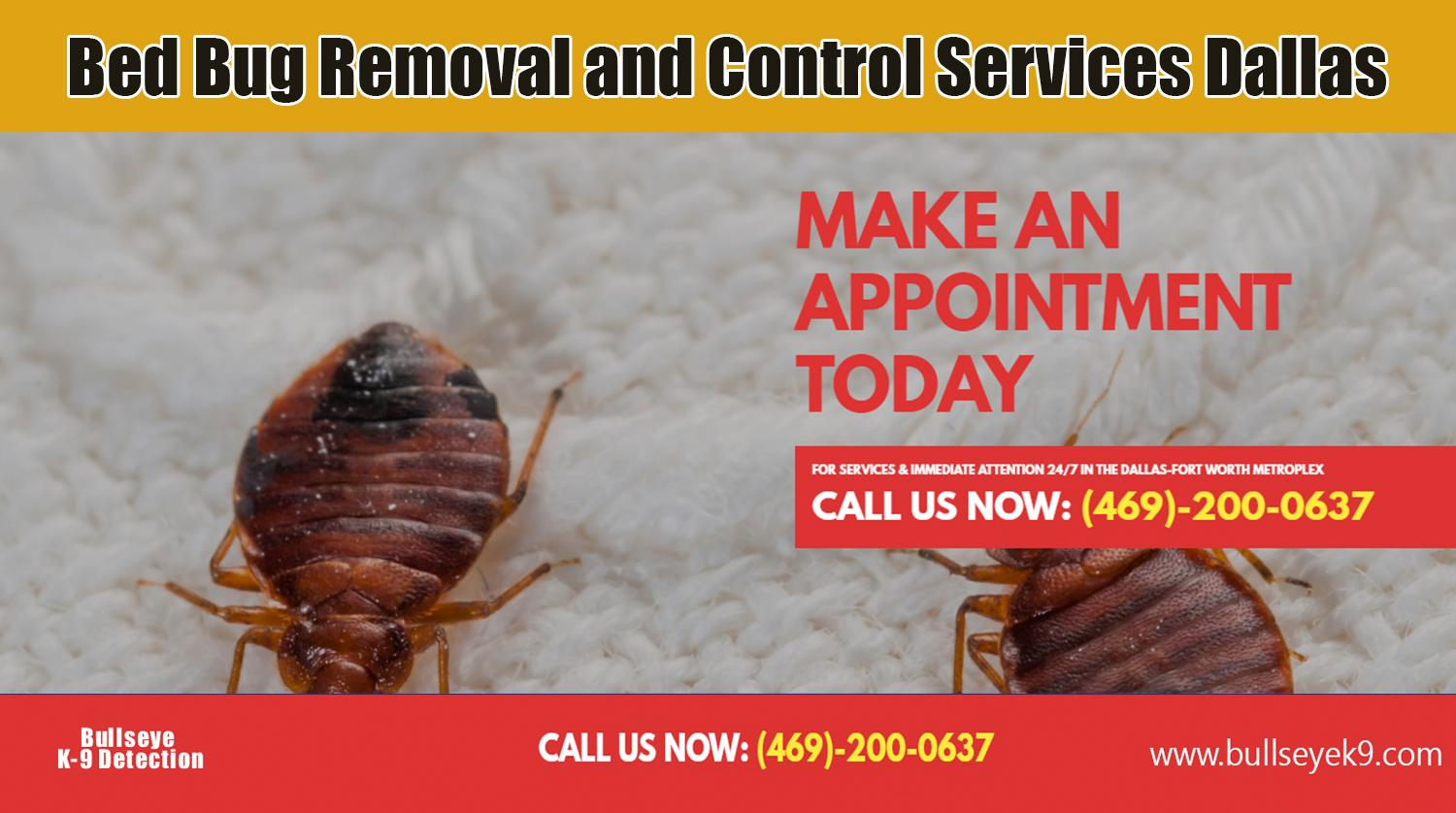 bed bug exterminator dallas cost