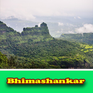 Pune To Bhimashankar Car