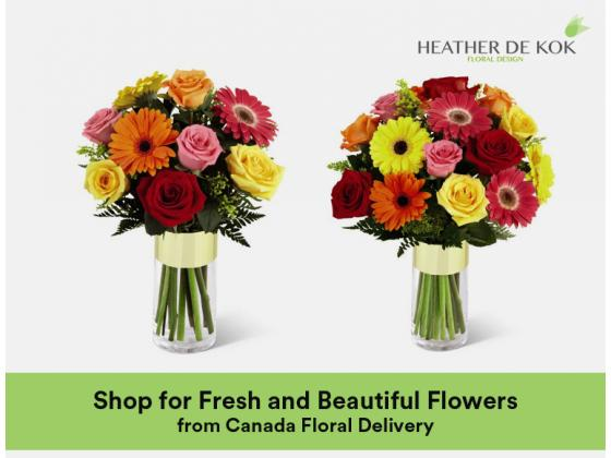Shop for Fresh and Beautiful Flowers from Canada Floral Delivery