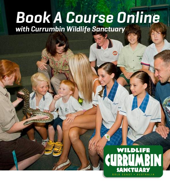 Book A Course Online with Currumbin Wildlife Sanctuary