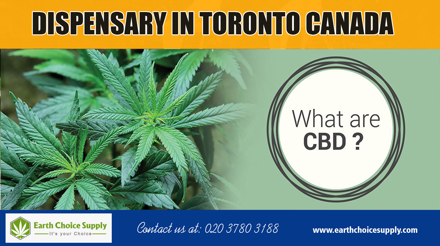 Dispensary in Toronto Canada | Call Us - 416-922-7238 | earthchoicesupply.com