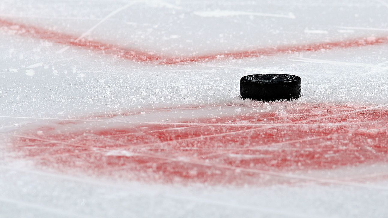Seven hockey players suspended in Belarus match-fixing case