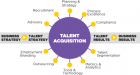 Talent Acquisition is a major in the Human Resources Segment